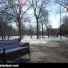 ole-miss-grove-bench-snow
