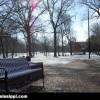 ole-miss-grove-bench-snow